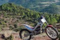 HONDA MONTESA 250 4RT